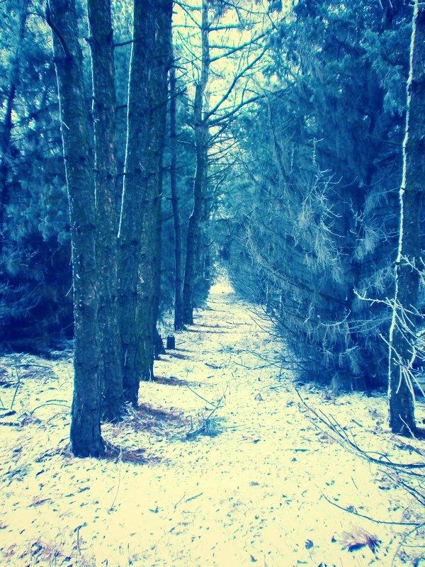 Лесной пейзаж - mAri