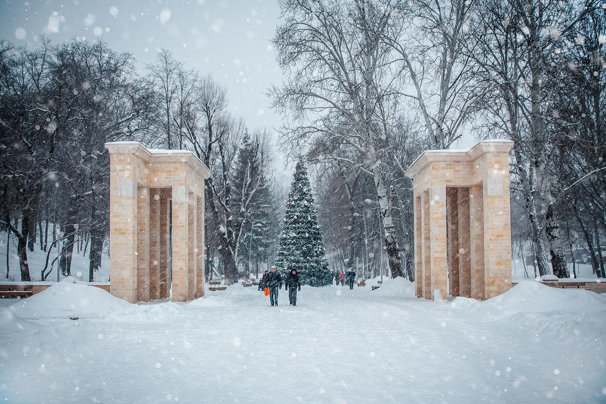 парк Динамо - Лариса
