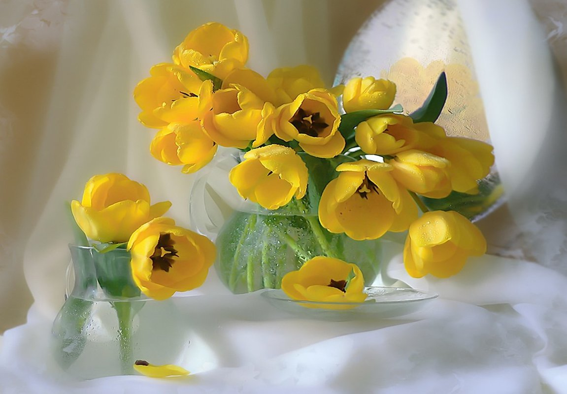 Мои любимые цветы. - Galina Belugina