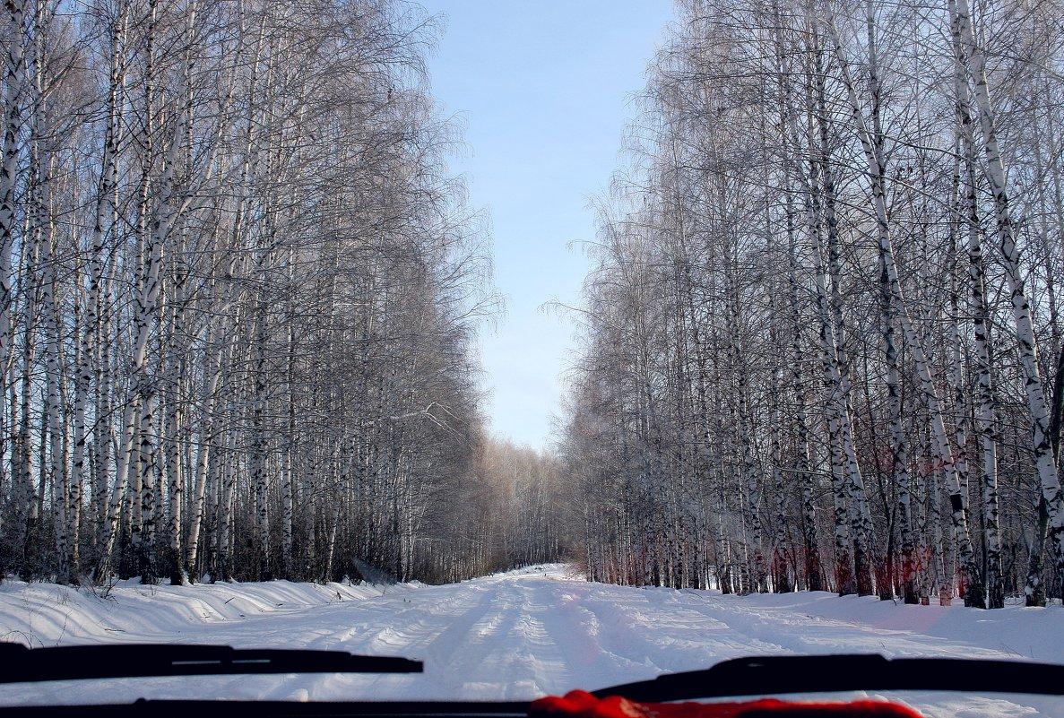 Путешествие красной варежки... - Валерия  Полещикова