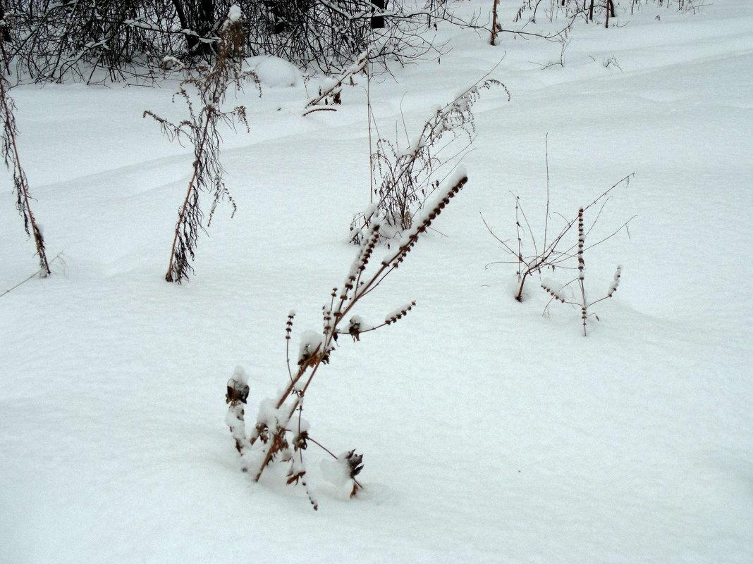 Много снегу намело . - Мила Бовкун