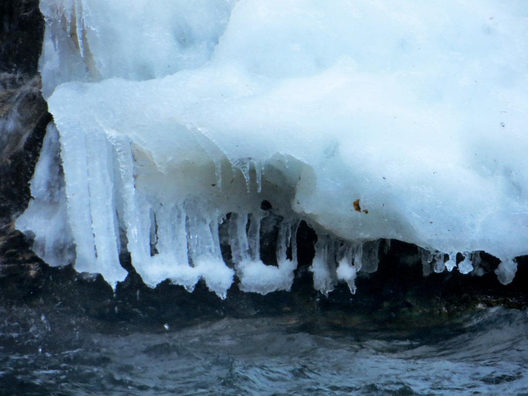 Когда мороз - Наталья (D.Nat@lia) Джикидзе (Берёзина)
