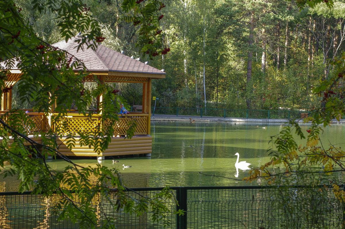 Новосибирский зоопарк - Михаил Измайлов