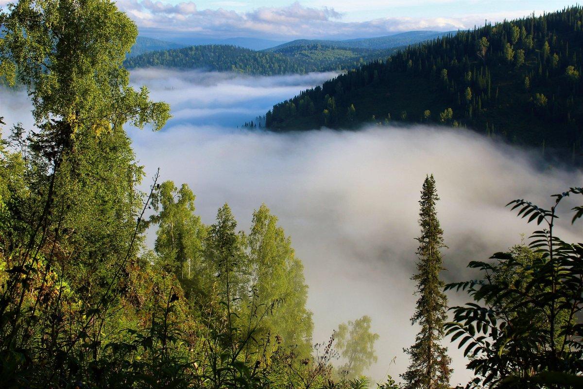 Туман заполнил долину - Сергей Чиняев
