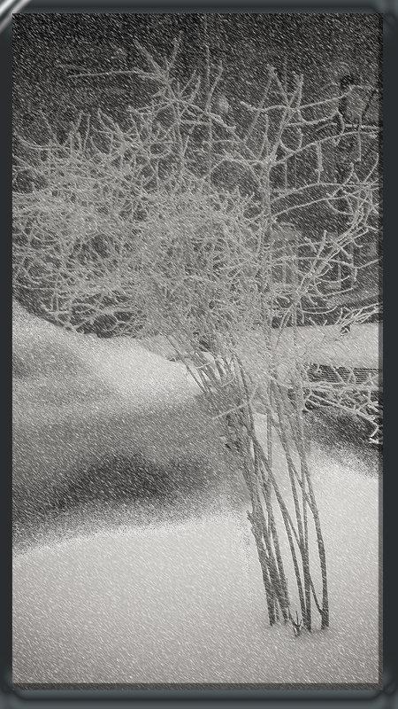 Снег идёт - Elena