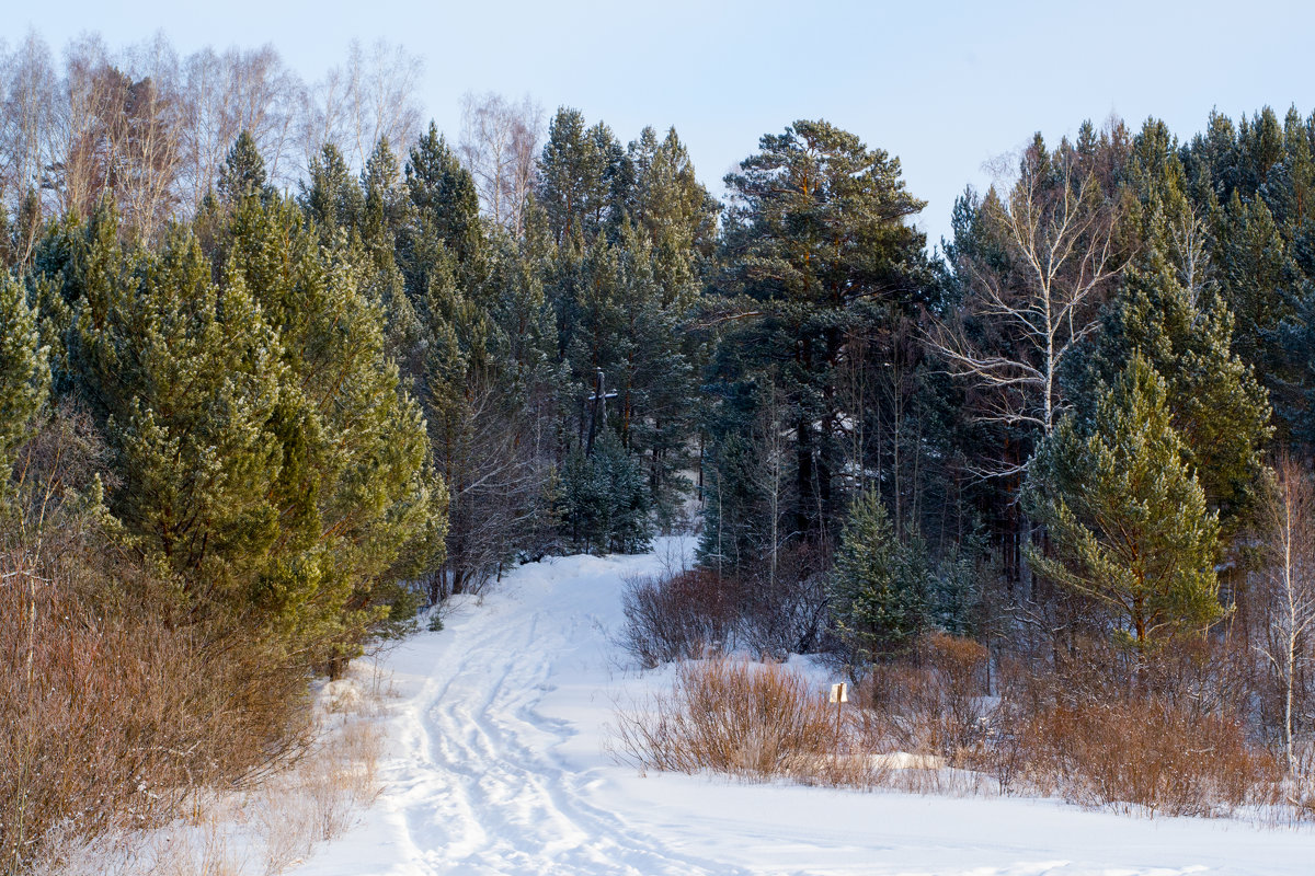 Зимняя дорога - Константин Батищев