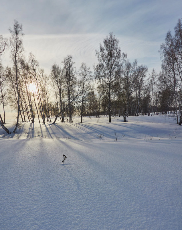снежная зима - Николай Мальцев