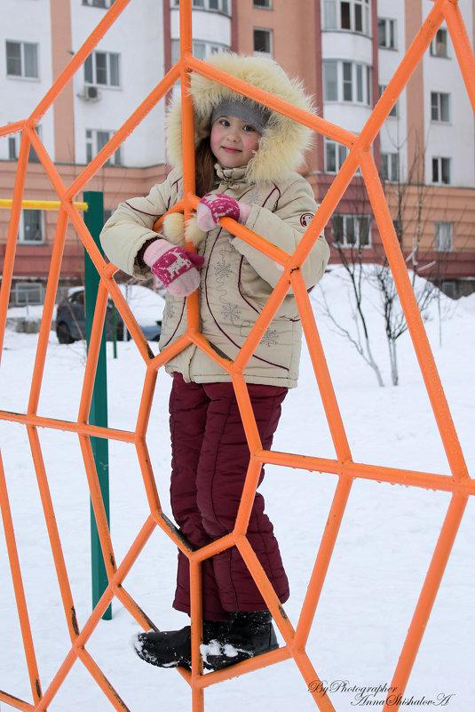 Настенька в зимней паутине - Анна Шишалова
