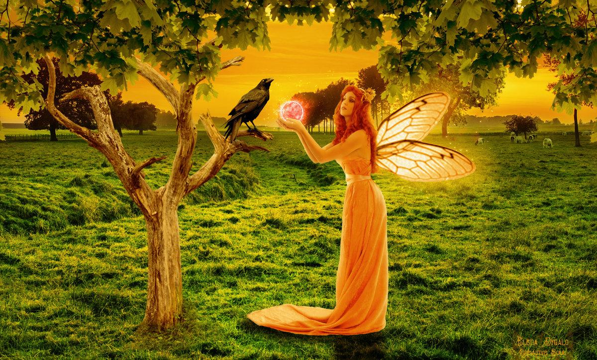фея и ворон - Елена