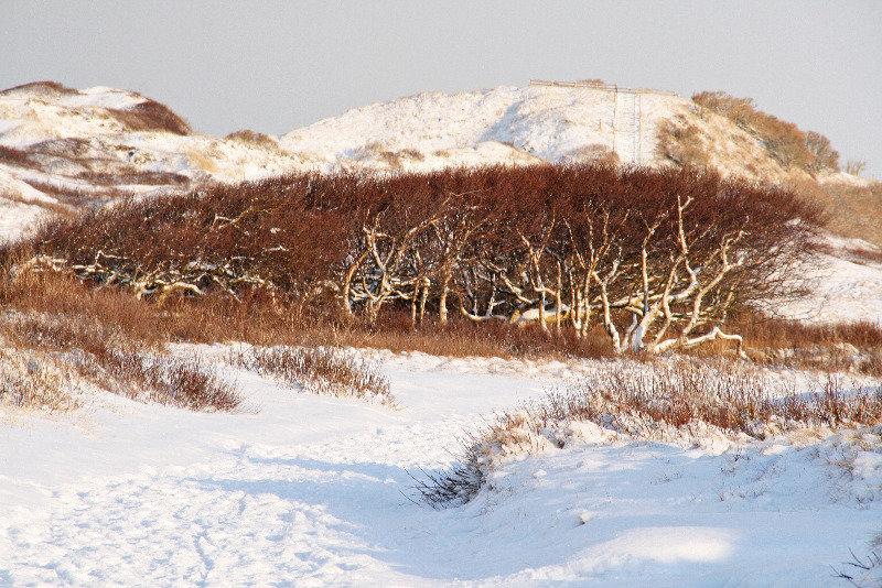 Зимний пейзаж острова Норденей - Kapris VS