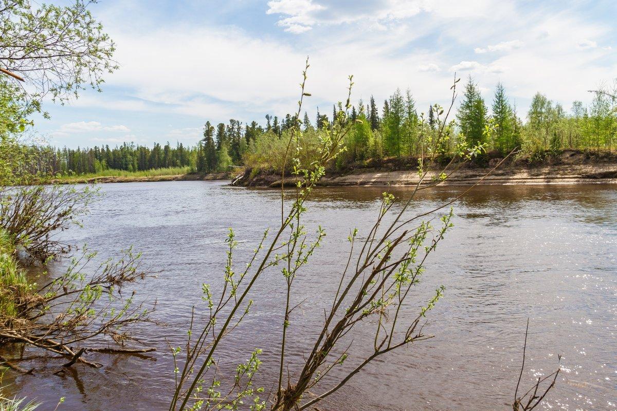 Река - Дмитрий Сиялов