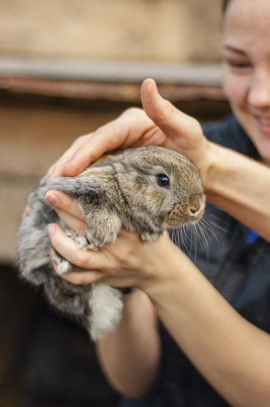 Just a rabbit ^^ - Сергей Nikon
