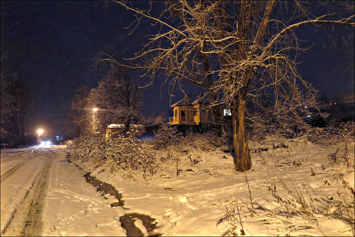 Ночью шел снег - Leonid Rutov
