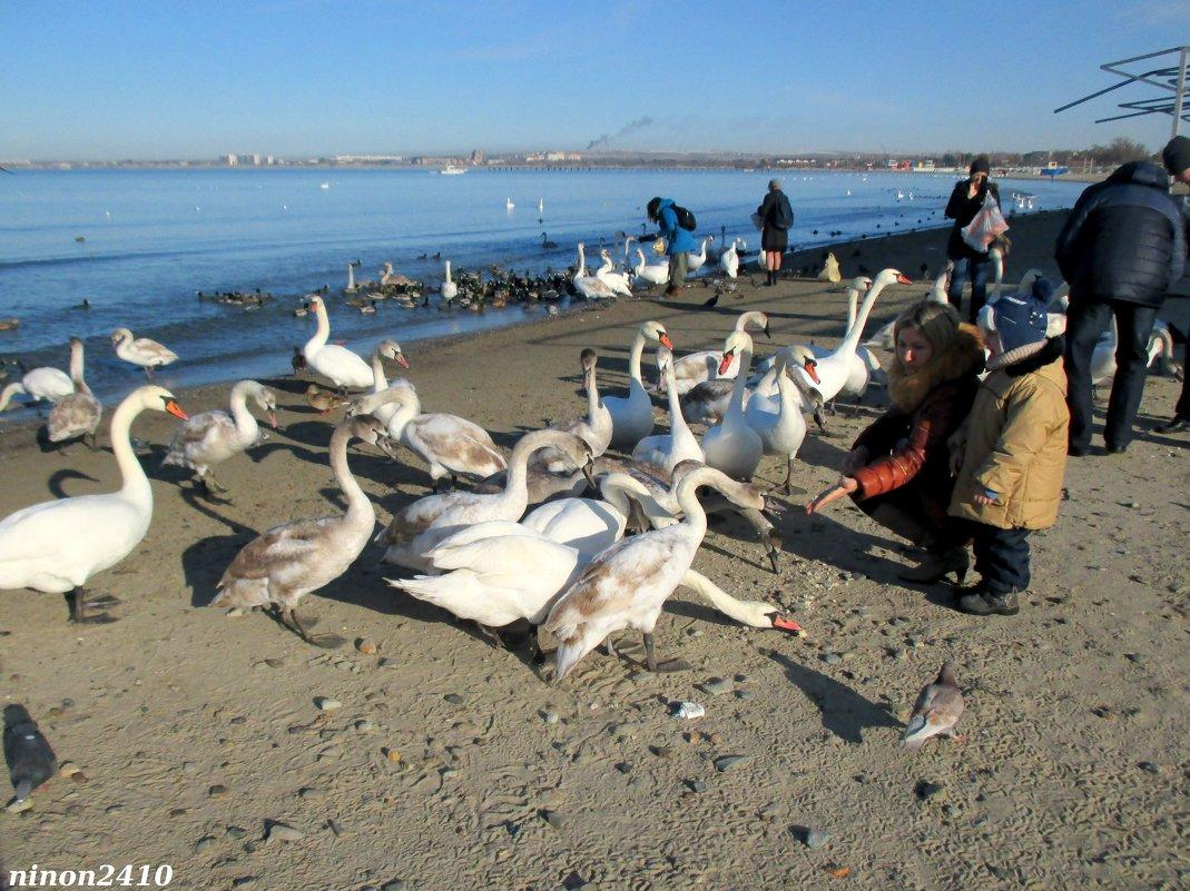 На анапском пляже - Нина Бутко