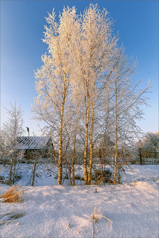 Зимний вечер в деревне... - Александр Никитинский