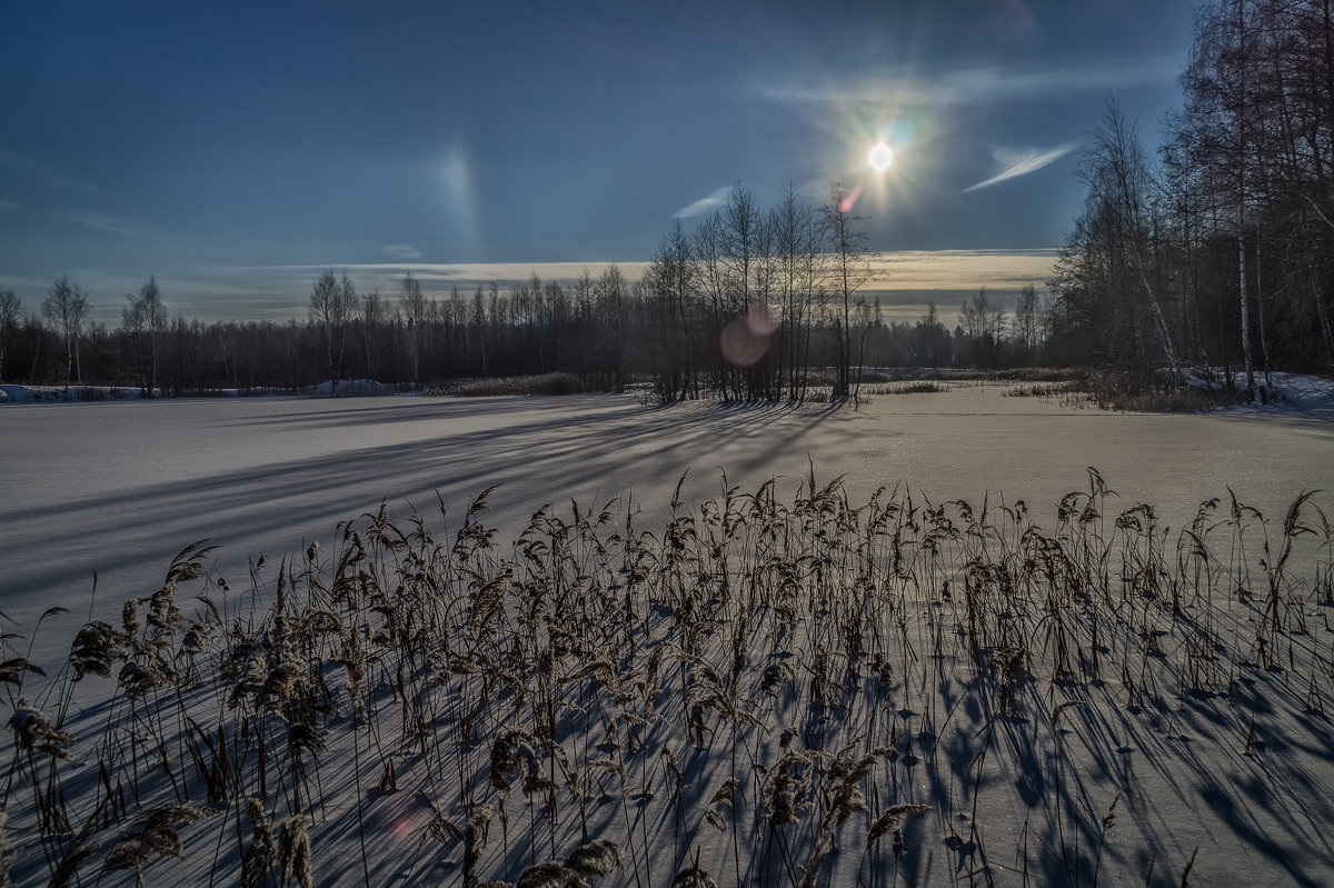 Мороз и Солнце 5 - Андрей Дворников