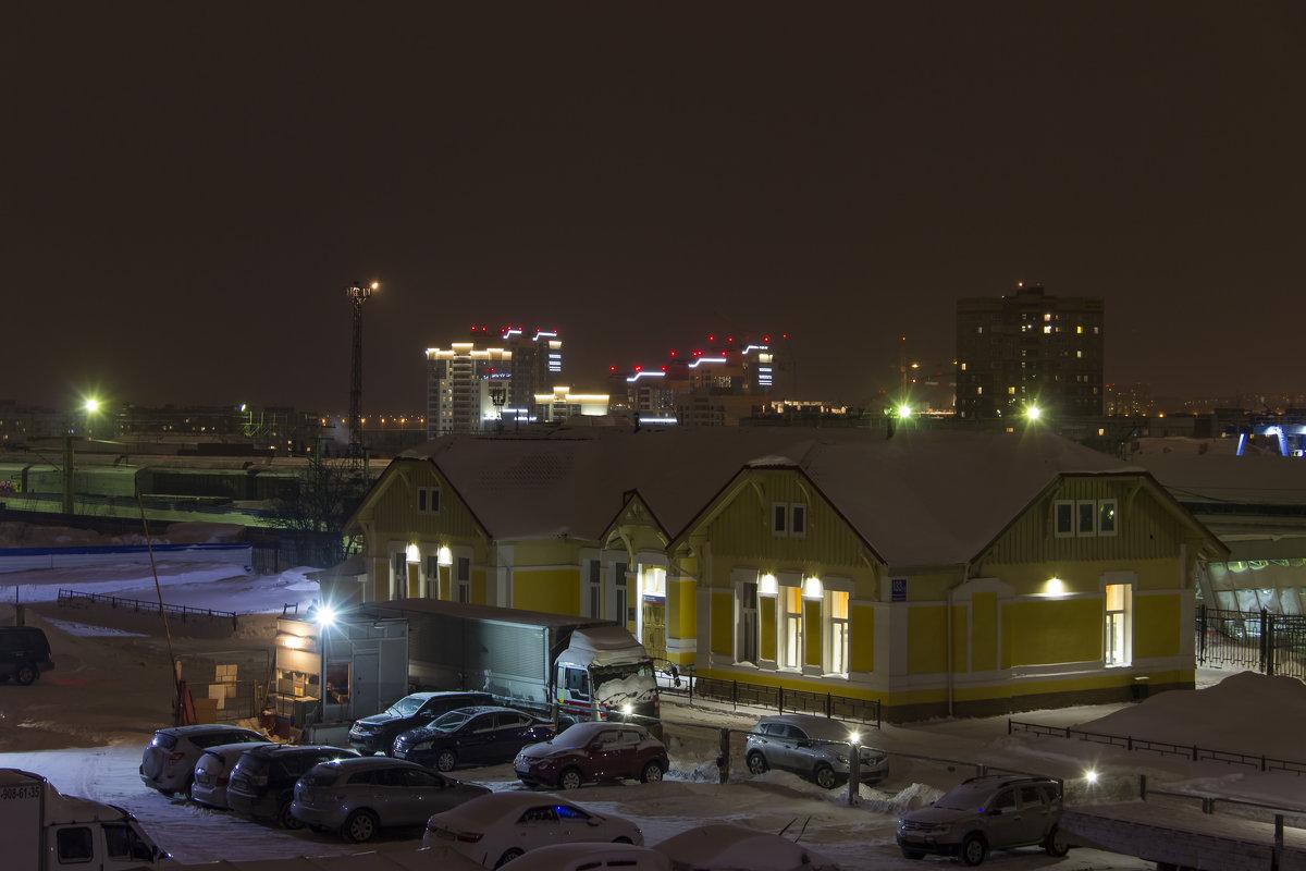 Вокзал Новосибирск-Южный - Дима Пискунов