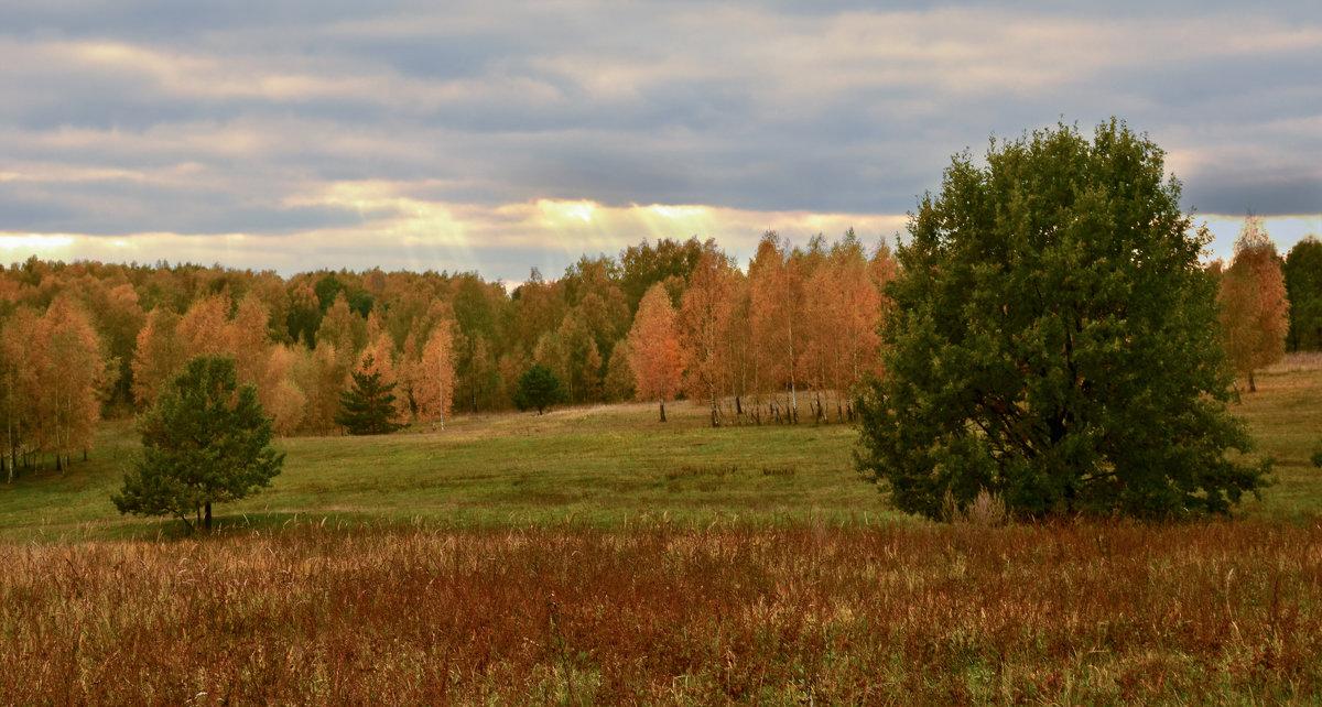 Про рыжую осень - Лариса Березуцкая