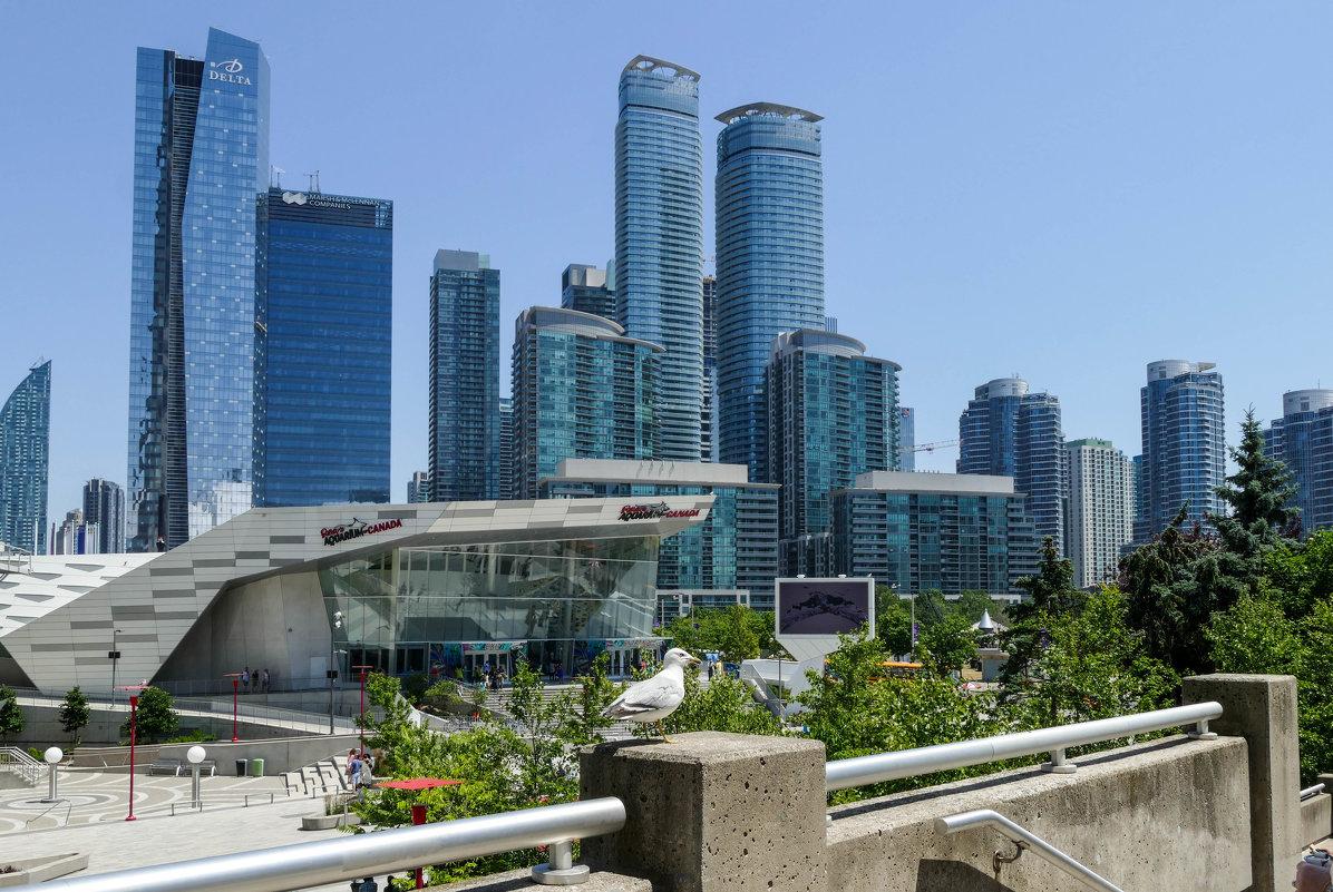 Один из уголков центра Торонто... - Юрий Поляков