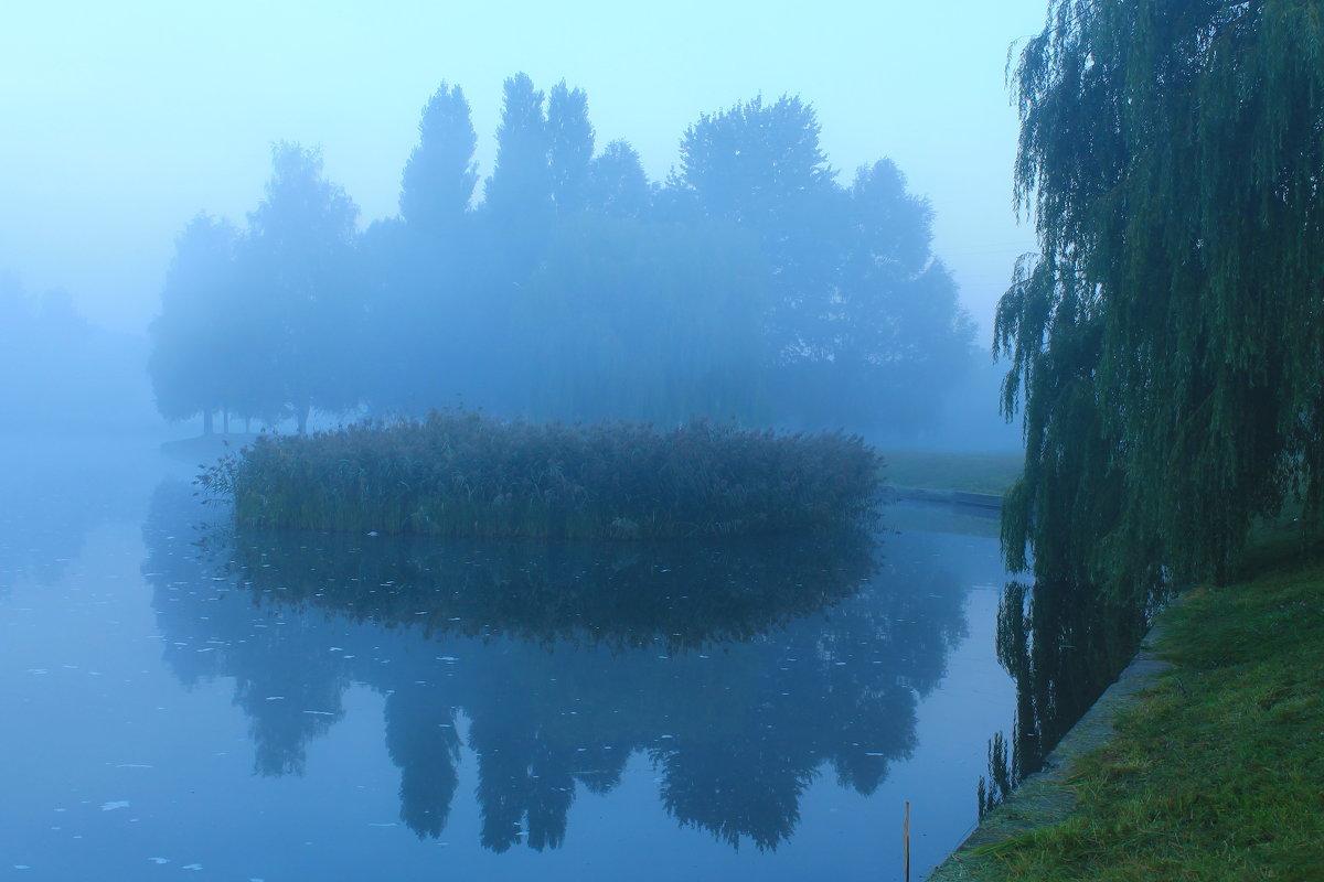туман - Aleksandr Kaziniets