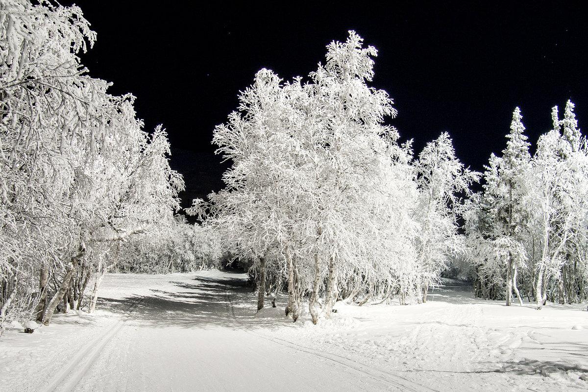 Зима - Александр Неустроев