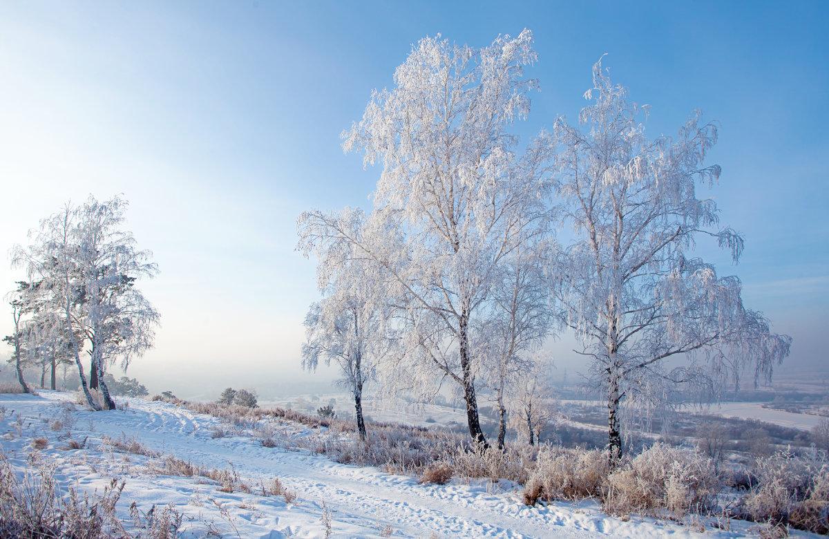 Мороз и солнце, день прекрасен... - Анатолий Иргл