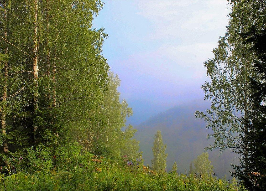 Туманные дали - Сергей Чиняев