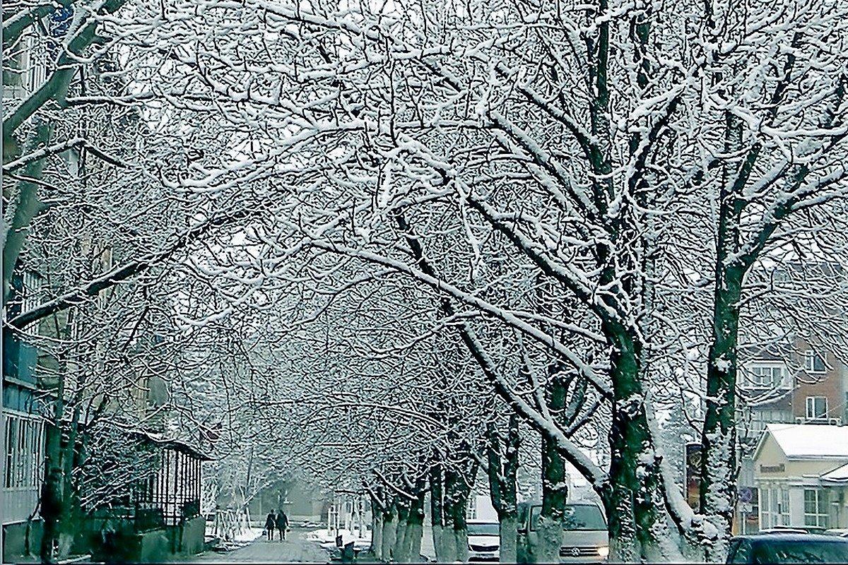 зима. - Ivana