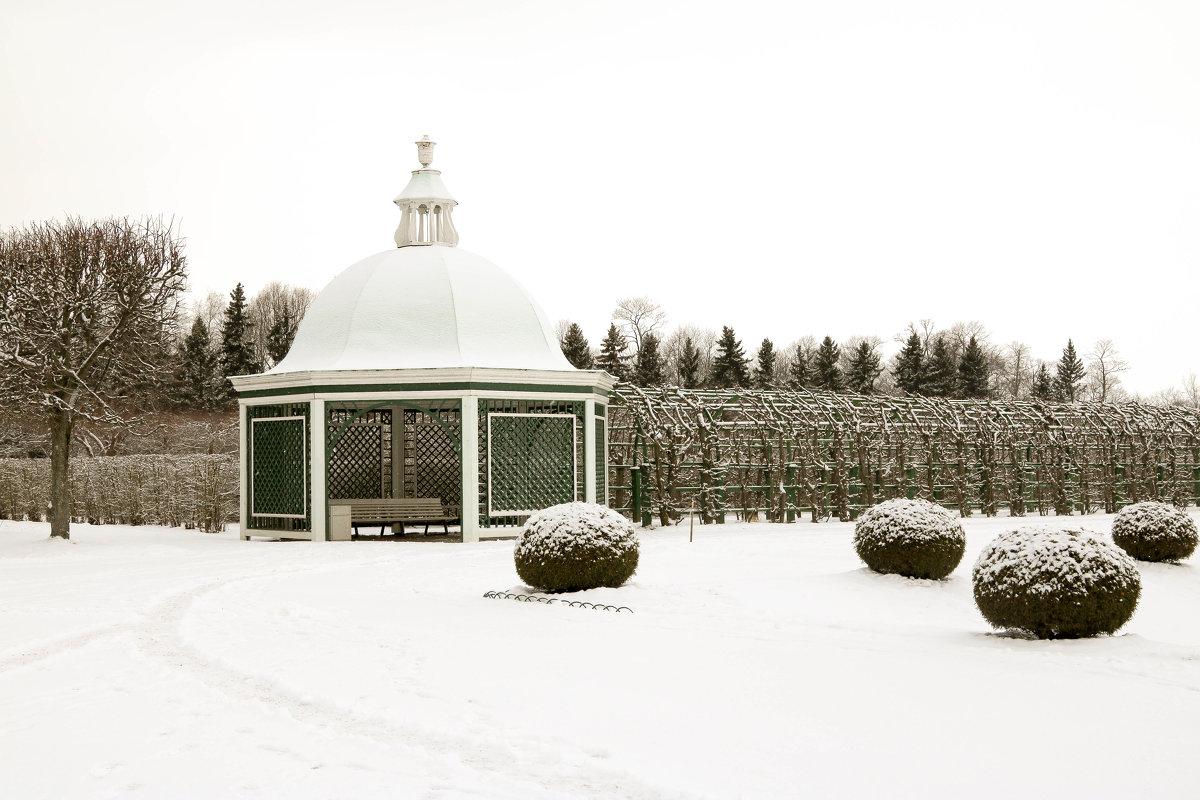 Петергоф в снегу - Петр