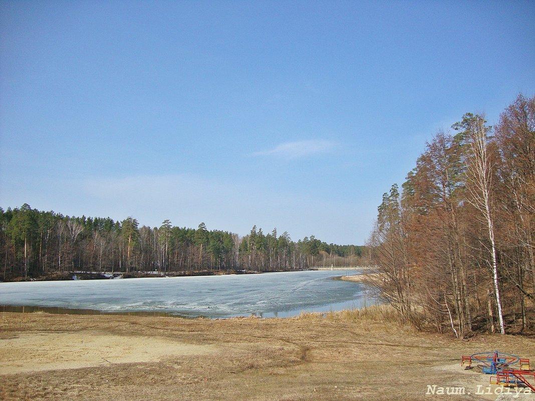 Вот такой апрель. Таяние снега - Лидия (naum.lidiya)