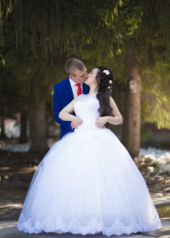 Сергей и Анастасия - Алексей Лихошерстов