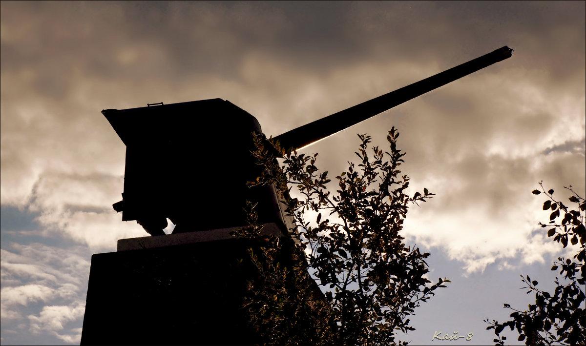 Корабельное орудие - Кай-8 (Ярослав) Забелин