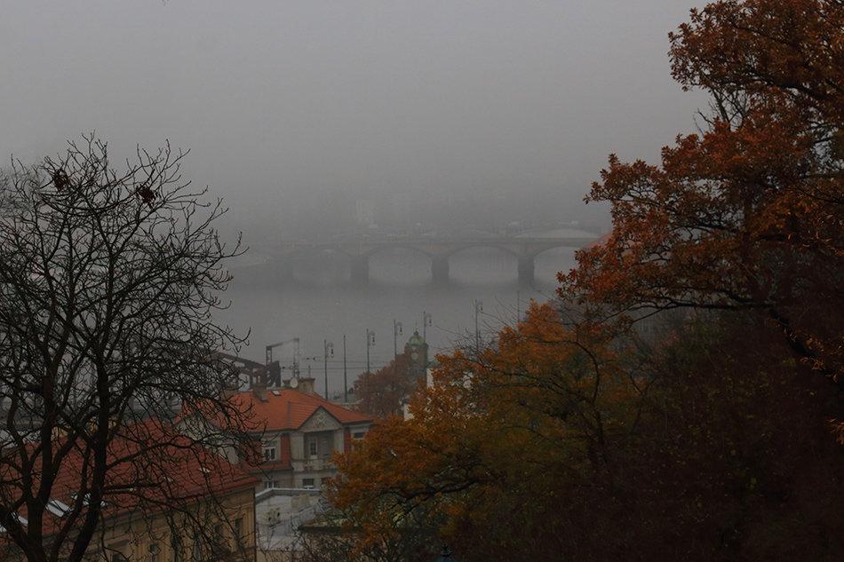 Город в тумане - Татьяна Панчешная