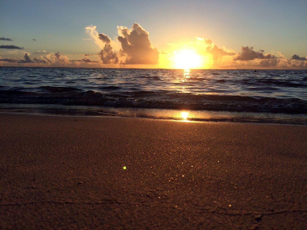 Океан - Kylie Row