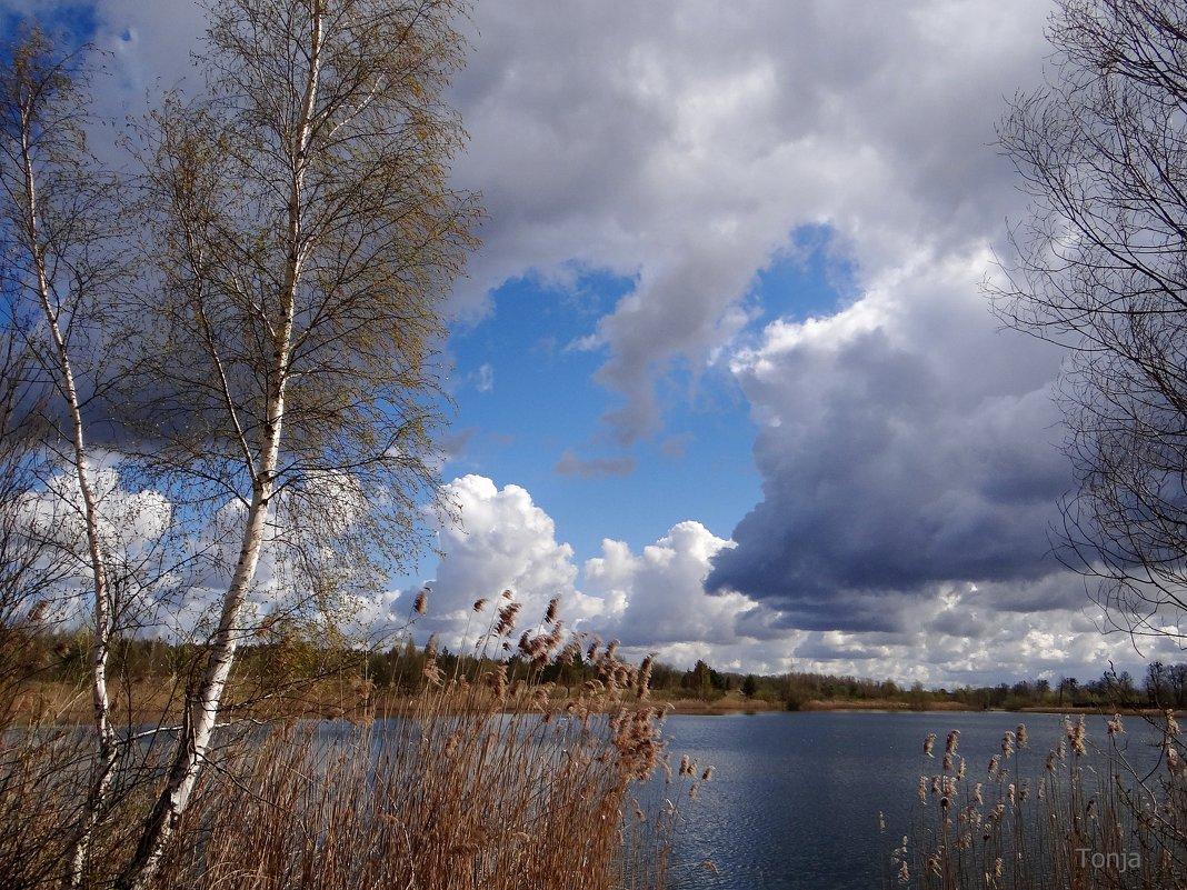Свинцовые облака.. - Антонина Гугаева