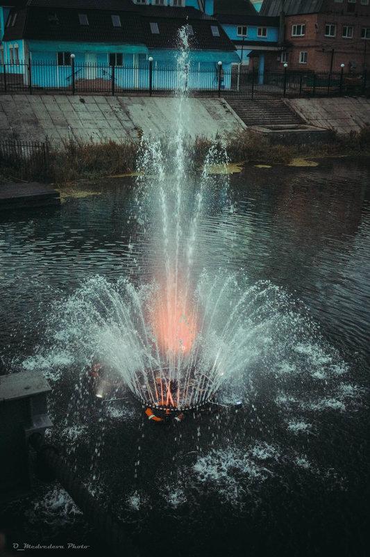 фонтан - Ольга (Кошкотень) Медведева