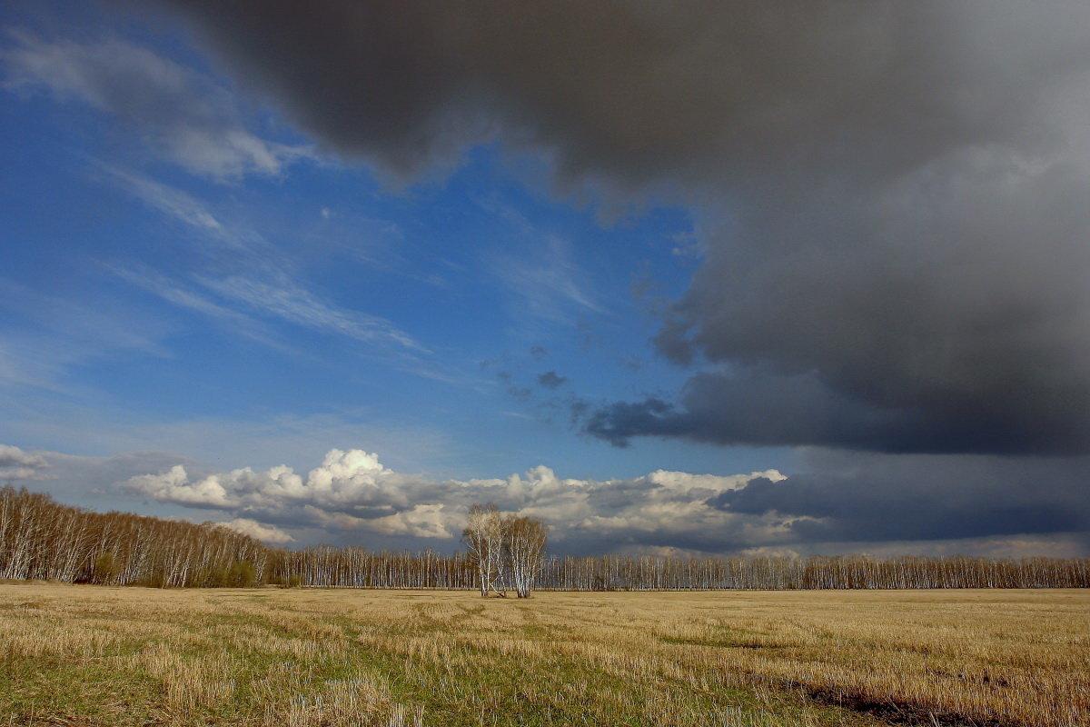Переменчивая погода - Nikita Volkov