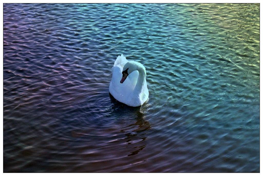 А белый лебедь на пруду... - Натали Пам