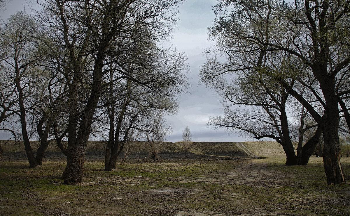 Опять весна на белом свете... - Людмила Шустова