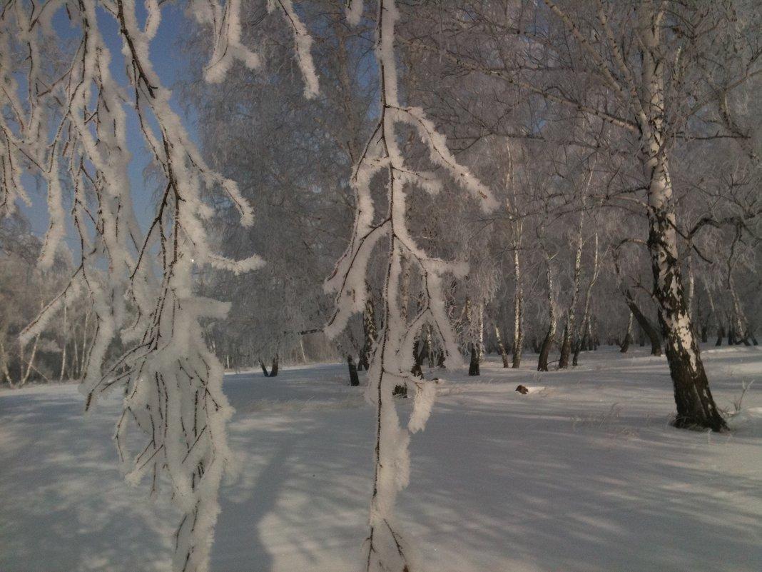 Зимушка - Валентина Богатко