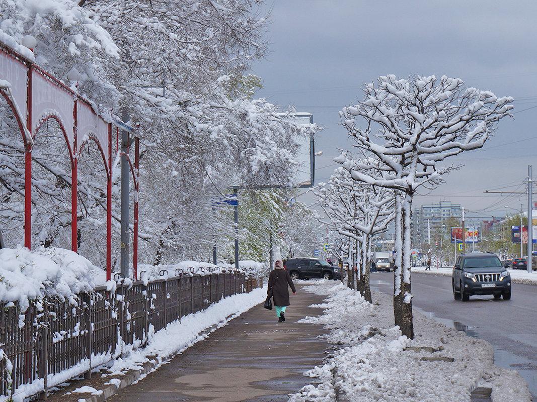 Майский снегопад - Екатерина Торганская