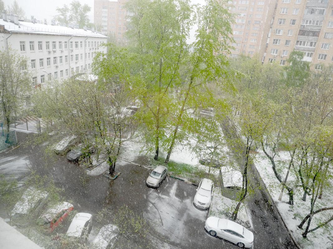 8 МАЯ ... а снег идёт... - Александр Шурпаков
