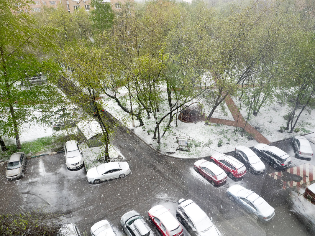 8 МАЯ ... а снег идёт ... - Александр Шурпаков