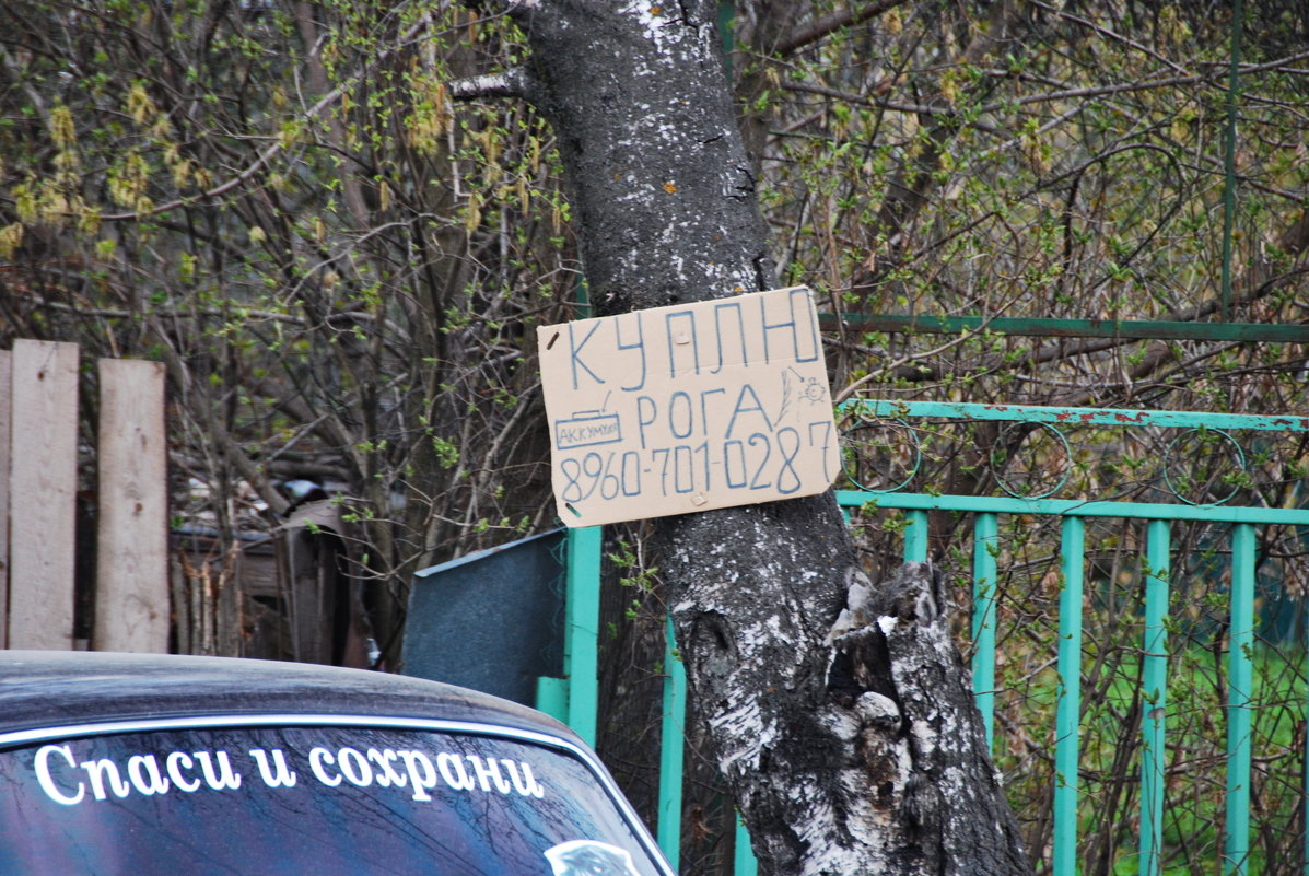 ТАК УСТРОЕН МИР - Юрий Вовк