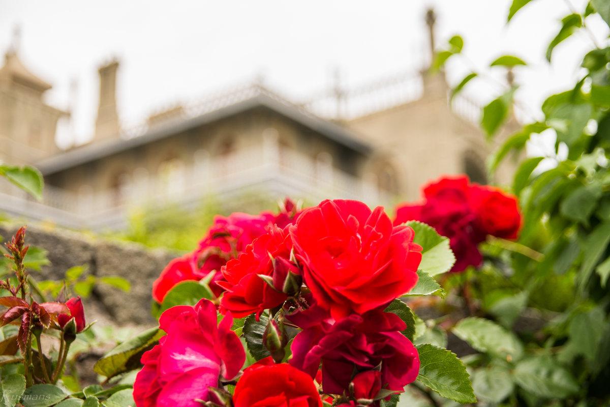 Дворец в цветах. - Ruslan