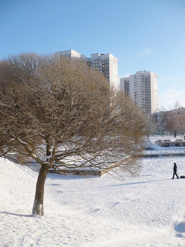 Зима в городе... - Жанна Литуева