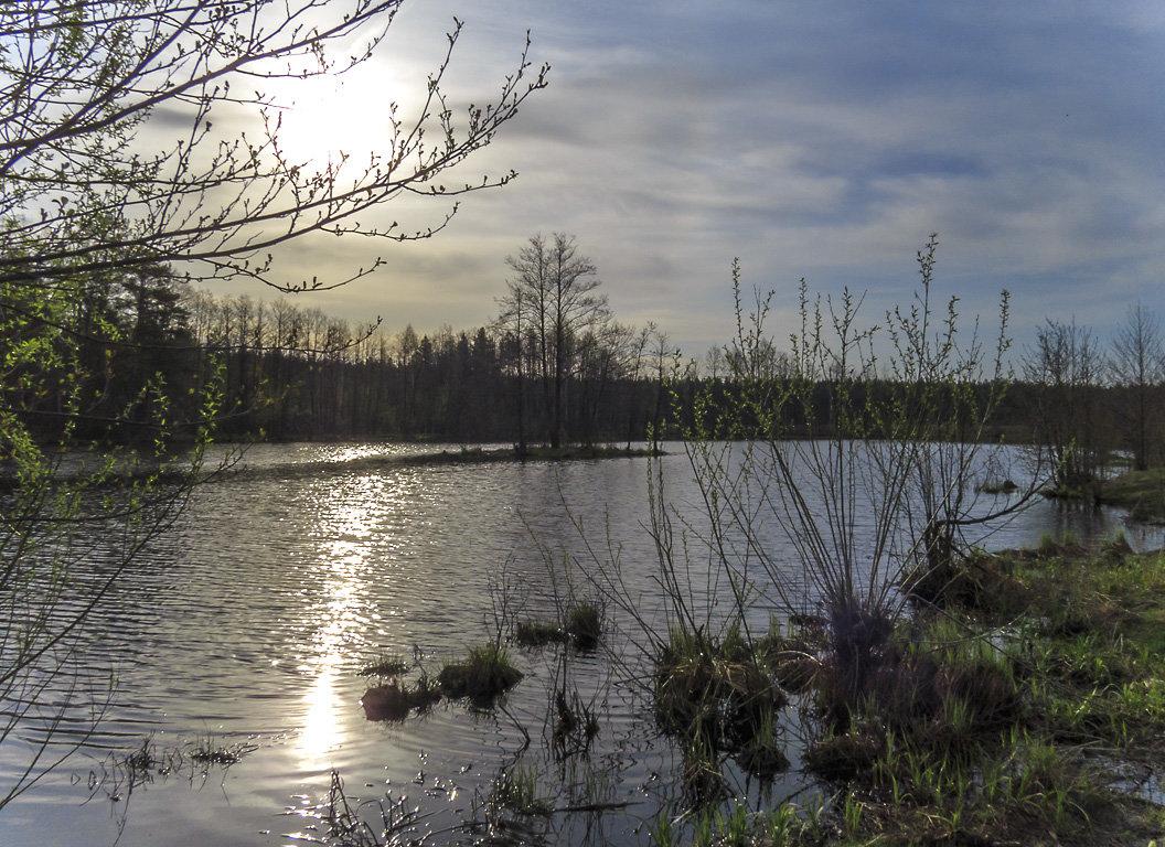 На Барском озере - Сергей Цветков