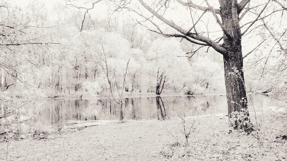 Сон о майском снеге - Tanja Gerster