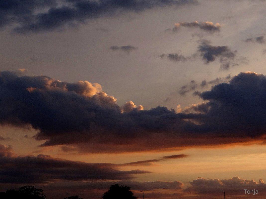 Шлейф закатных облачков. - Антонина Гугаева