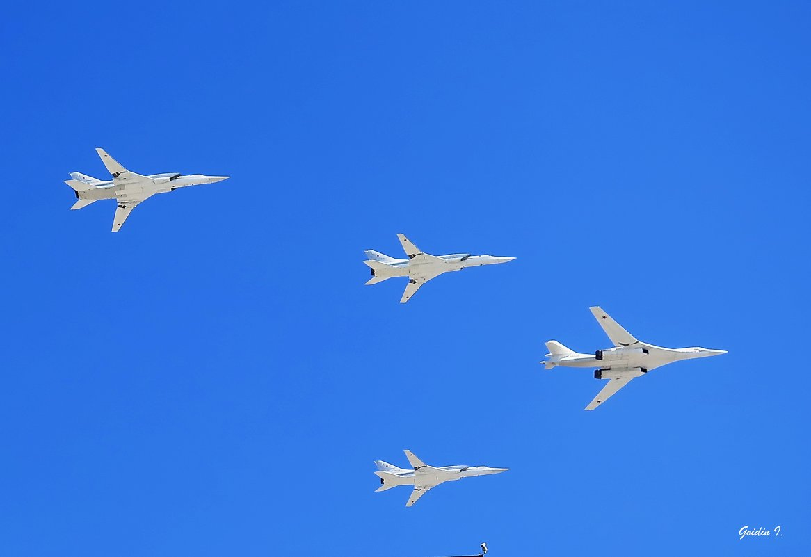 """""""Белый лебедь"""". - Ilya Goidin"""